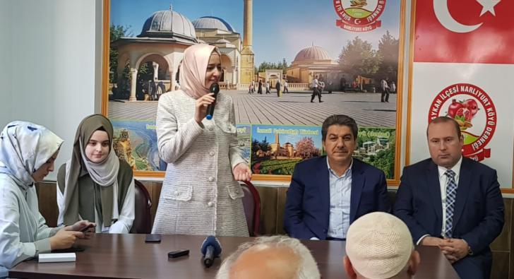 Bakan Kaya: Mehmetçiğimiz Kandil'e Doğru İlerliyor